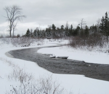 web-cecil-river