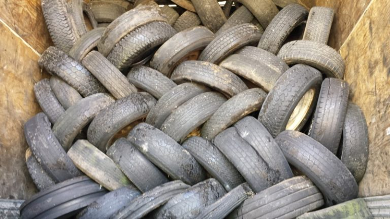 tires web